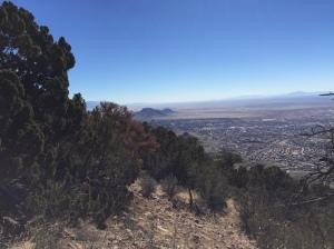 Overseeing Albuquerque